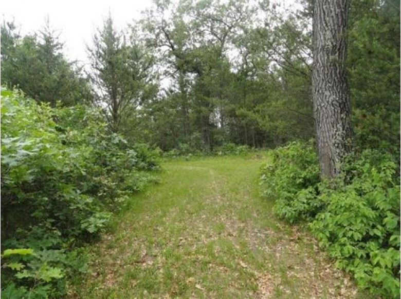 L26 S Timber Bay Ave, Friendship, WI by First Weber Real Estate $24,900