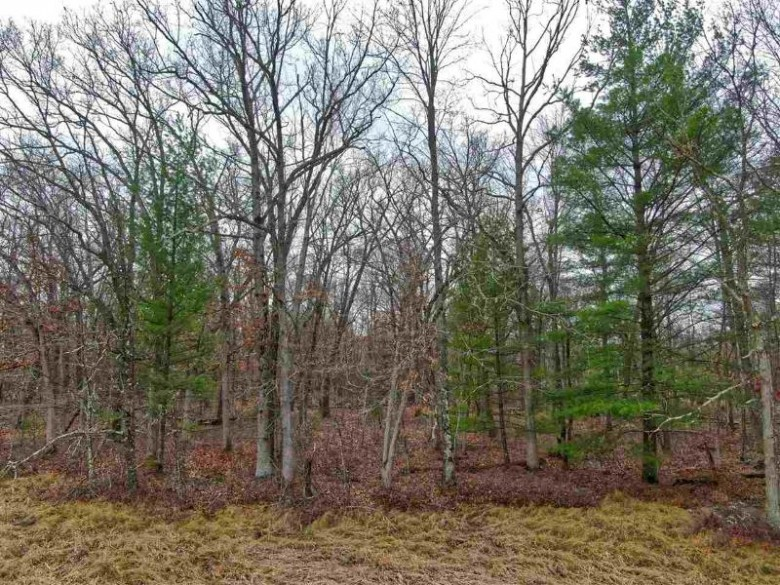 5.34 ACRES Trout Rd, Wisconsin Dells, WI by Cold Water Realty, Llc $69,000