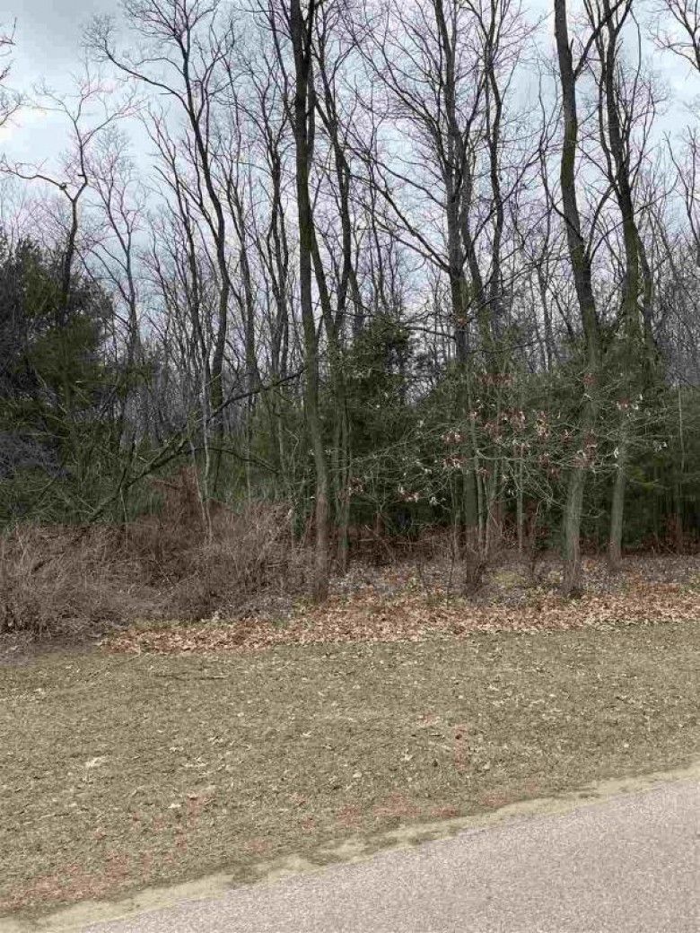 18.18 AC Cemetery St, Lyndon Station, WI by Castle Rock Realty Llc $69,900