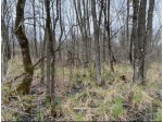 40 ACRES Dragonfly Rd, Warrens, WI by First Weber Real Estate $142,600