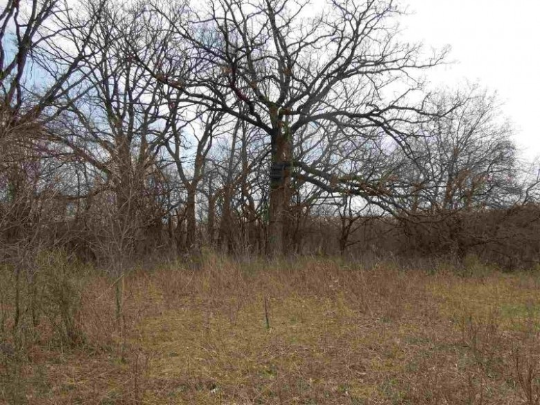 Star School Rd, Fort Atkinson, WI by Whitetail Properties Real Estate Llc $360,000