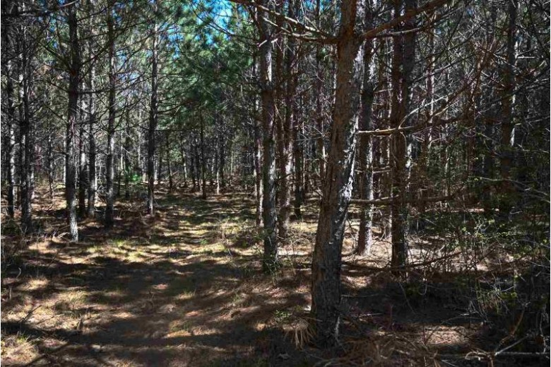 L44 S Timber Bay Ave, Friendship, WI by Castle Rock Realty Llc $53,900