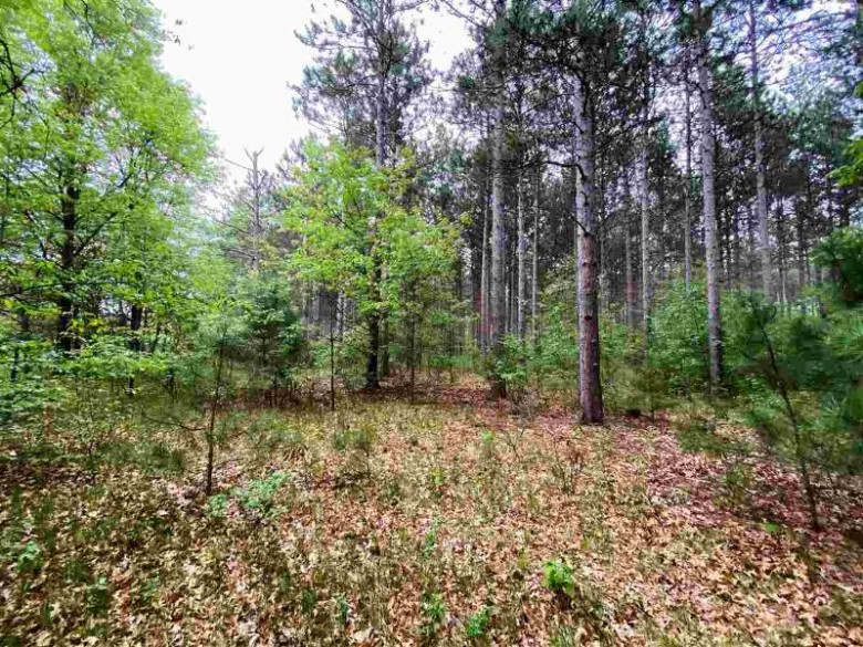 LOT 45 7th St Nekoosa, WI 54457 by Coldwell Banker Belva Parr Realty $154,900