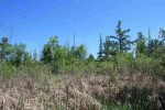 Williams Road Hartford, WI 53027 by Whitetail Properties Real Estate Llc $220,000