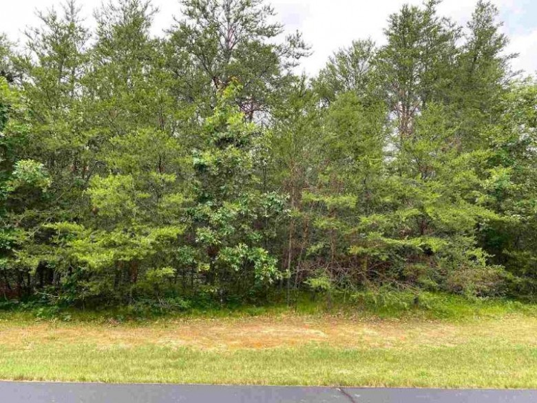 127 Northwoods Cir Wisconsin Dells, WI 53965 by First Weber Real Estate $29,900
