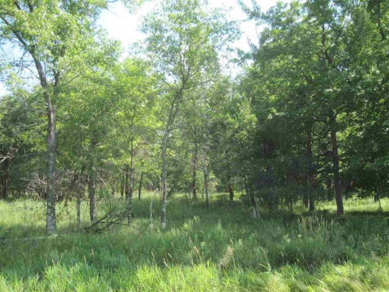 39+ ACRES County Road O, Hancock, WI by Whitemarsh Realty Llc $105,000