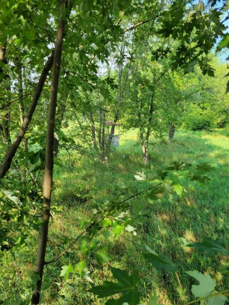 10 ACRE County Road J Princeton, WI 54968 by Cotter Realty Llc $34,900