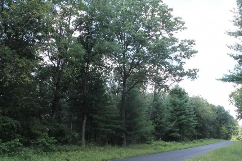 80 ACRES Eagle Rd Neshkoro, WI 54960-0000 by First Weber Real Estate $300,000