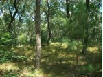 17.59 AC Raedel Ln Wisconsin Dells, WI 53965 by Century 21 Affiliated $179,900