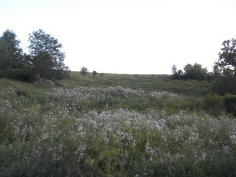 2200 Clay Hill Rd Dodgeville, WI 53533 by Potterton-Rule Inc $89,000