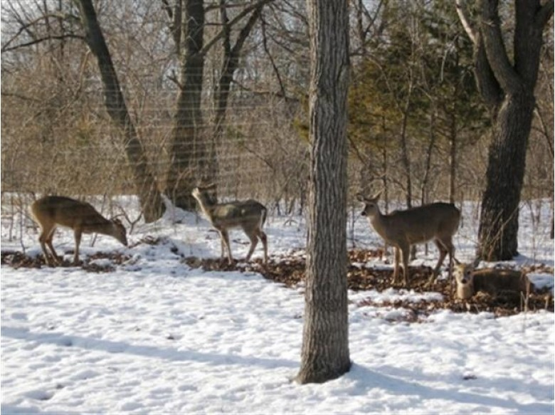 LOT 1 CSM 5016 Traut Rd Rio, WI 53960 by First Weber Real Estate $275,000