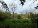 Hwy 21 Redgranite, WI 54970 by Realty Executives Premier $79,000