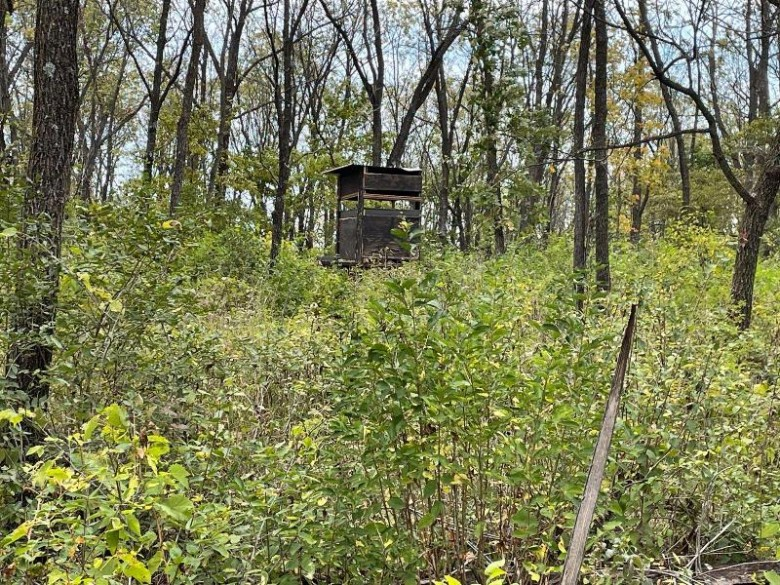W7844 Hwy 11 Browntown, WI 53522 by First Weber Real Estate $890,000