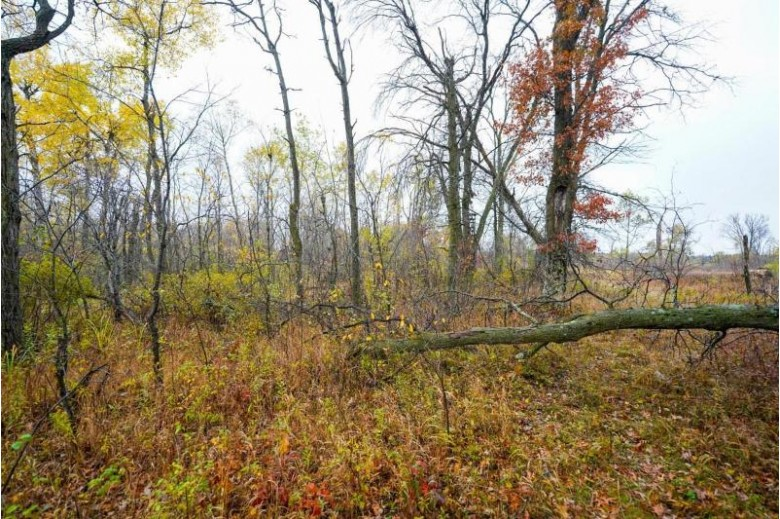 574 Archer Ave Plainfield, WI 54966 by United Country Midwest Lifestyle Properties $99,900