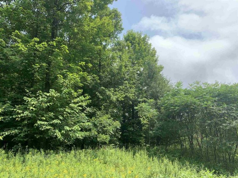 Thornapple Drive, Wittenberg, WI by Smart Move Realty $22,900