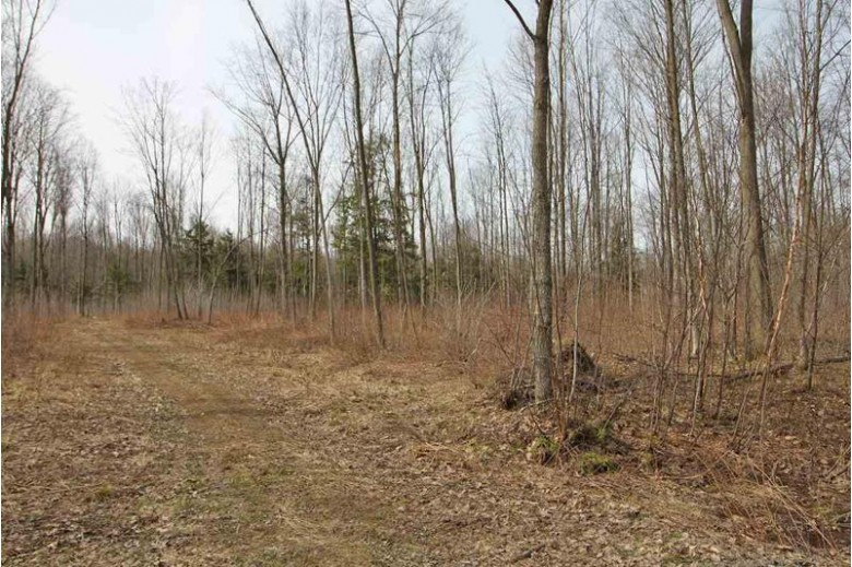 LOT 2 Kohl Road, Athens, WI by Coldwell Banker Action $12,500