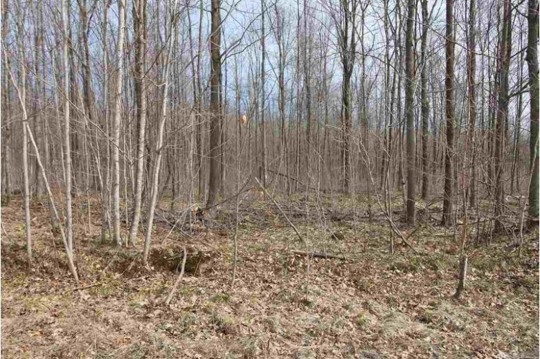 LOT 6 Kohl Road, Athens, WI by Coldwell Banker Action $16,900