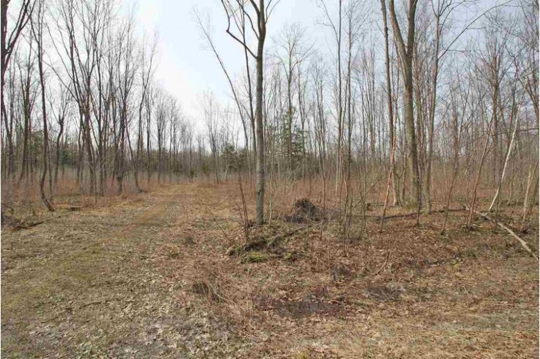 LOT 8 Kohl Road, Athens, WI by Coldwell Banker Action $16,900