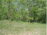 2.03 ACRES Ray Art Road LOT 10, Iola, WI by Re/Max Central $23,900