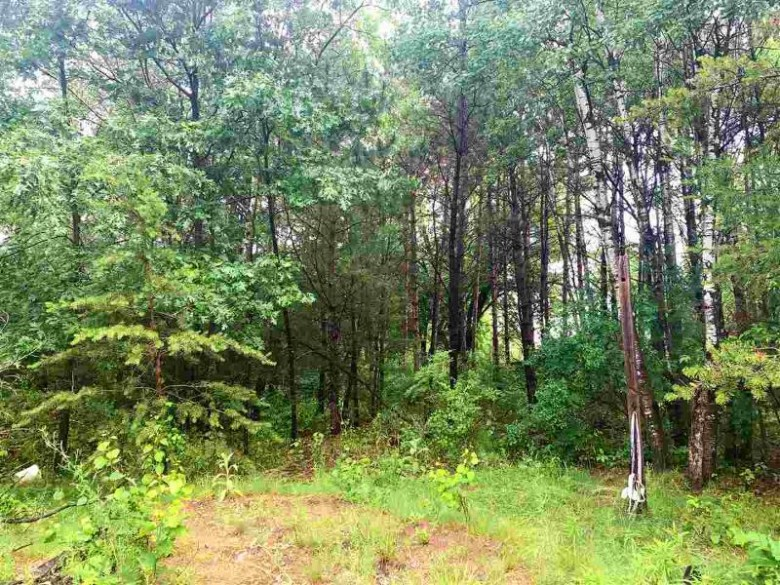 LOT 7 76th Street South, Wisconsin Rapids, WI by Coldwell Banker- Siewert Realtors $13,900