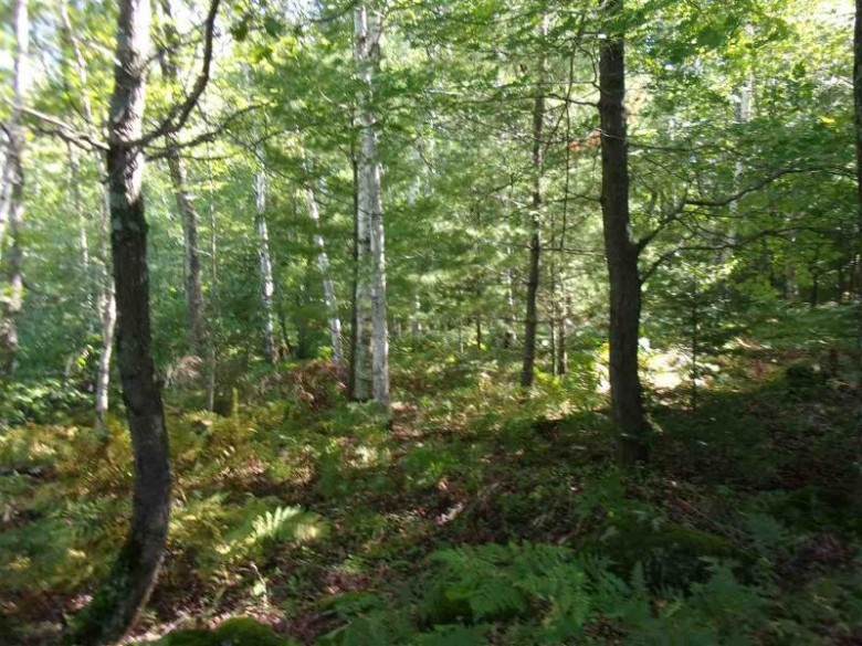 LOT 9 Unnamed Road, Medford, WI by Coldwell Banker- Siewert Realtors $5,000