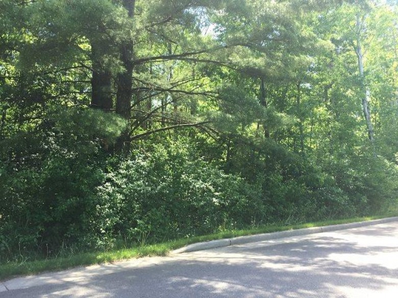 607 Roberts Street LOT 2, Spencer, WI by Coldwell Banker Brenizer $15,900
