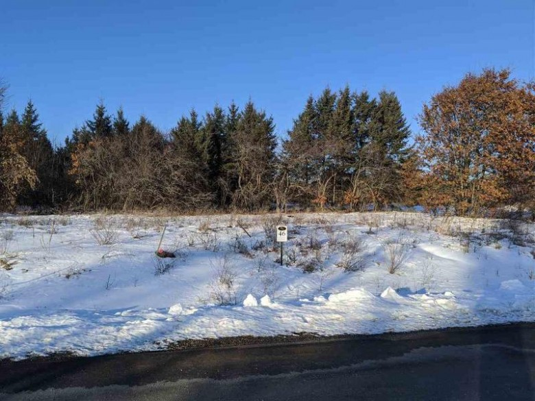 620 West Silverleaf Court, Plover, WI by Classic Realty, Llc $47,900