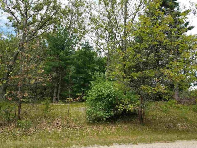 Lot 10 Fish Court, Oxford, WI by North Central Real Estate Brokerage, Llc $56,000