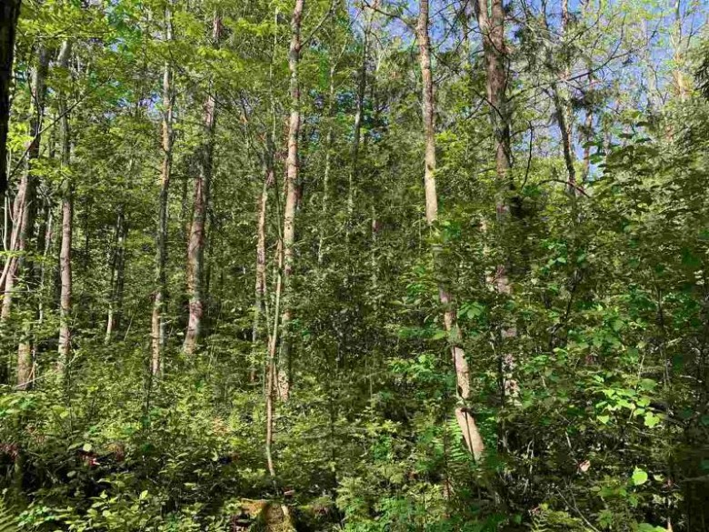 Camp 26 Road, Merrill, WI by Northwoods Community Realty Llc $54,900