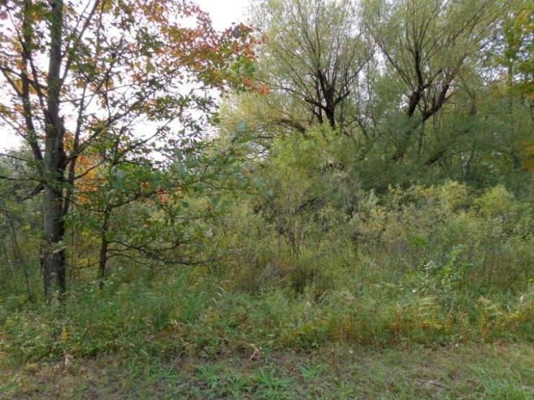 80 ACRES MOL Zinser Street, Weston, WI by First Weber Real Estate $900,000