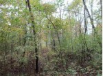 Park Road 48.6 AC MOL PARK COON RD, Wisconsin Rapids, WI by Keller Williams Stevens Point $79,900