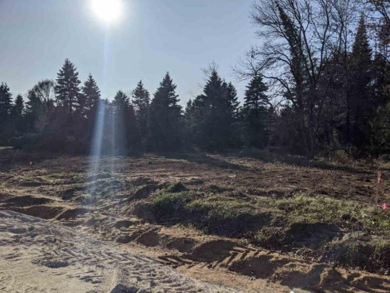 820 Torrey Pines Way LOT 51, Plover, WI by Classic Realty, Llc $49,900