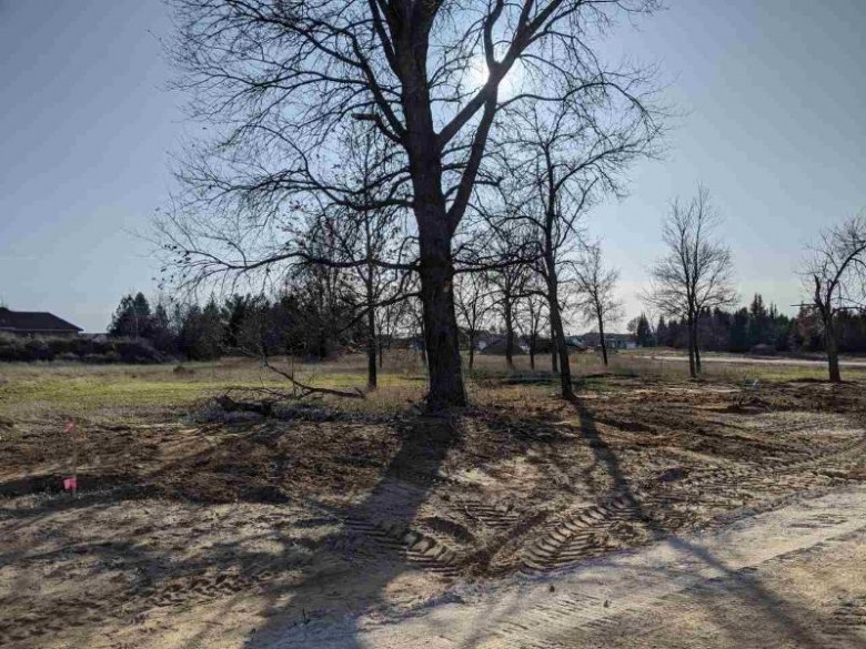 637 Briarwood Way LOT 59, Plover, WI by Classic Realty, Llc $49,900