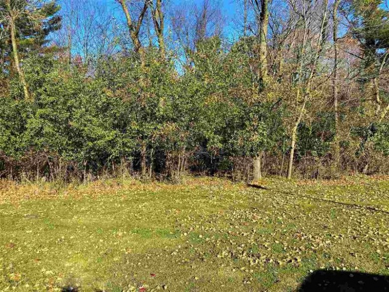 99 River Ridge Road PARCEL 34-08728, Wisconsin Rapids, WI by Nexthome Partners $20,000
