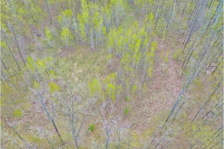PARCEL 12 Forest Edge Road, Westboro, WI by Dixon Greiner Realty, Llc $25,500