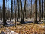 PARCEL 14 Forest Edge Road, Westboro, WI by Dixon Greiner Realty, Llc $29,900