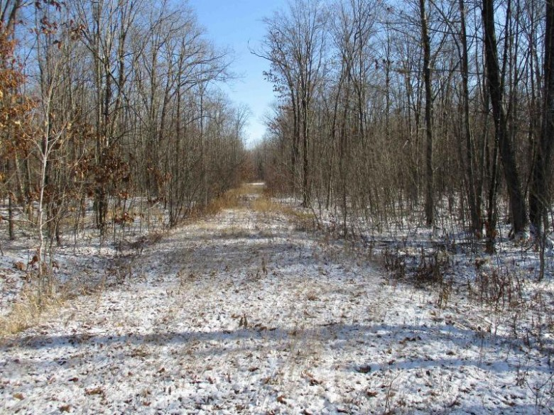 PARCEL 15 Forest Edge Road, Westboro, WI by Dixon Greiner Realty, Llc $28,900