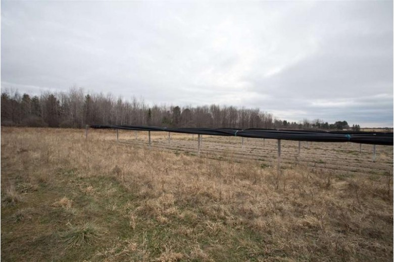 29.22 ACRES County Road Z, Merrill, WI by Amaximmo Llc $120,000
