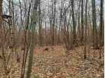 LOT 4 County Road Kk Mosinee, WI 54455 by First Weber Real Estate $54,900