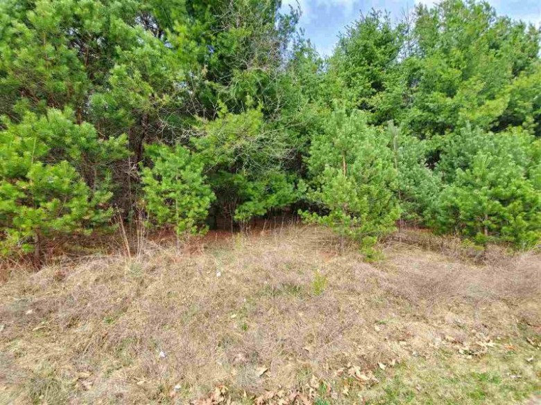1606 Woodbury Parkway LOT 7 Wausau, WI 54403 by First Weber Real Estate $45,900