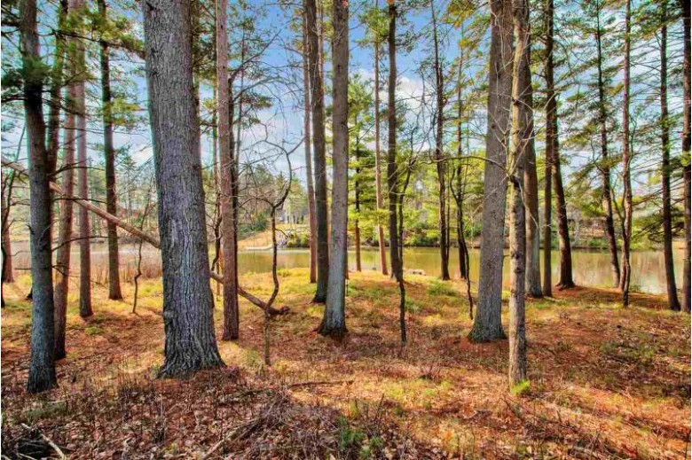 0 Fly Rod Trail, Wisconsin Rapids, WI by Coldwell Banker Real Estate Group $149,900