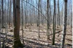 40 AC Trappe River Road, Wausau, WI by United Country Midwest Lifestyle Properties $129,900