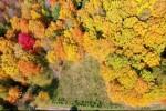 +/- 5.39 ACRES Sawyer Avenue Medford, WI 54451 by Dixon Greiner Realty, Llc $59,900