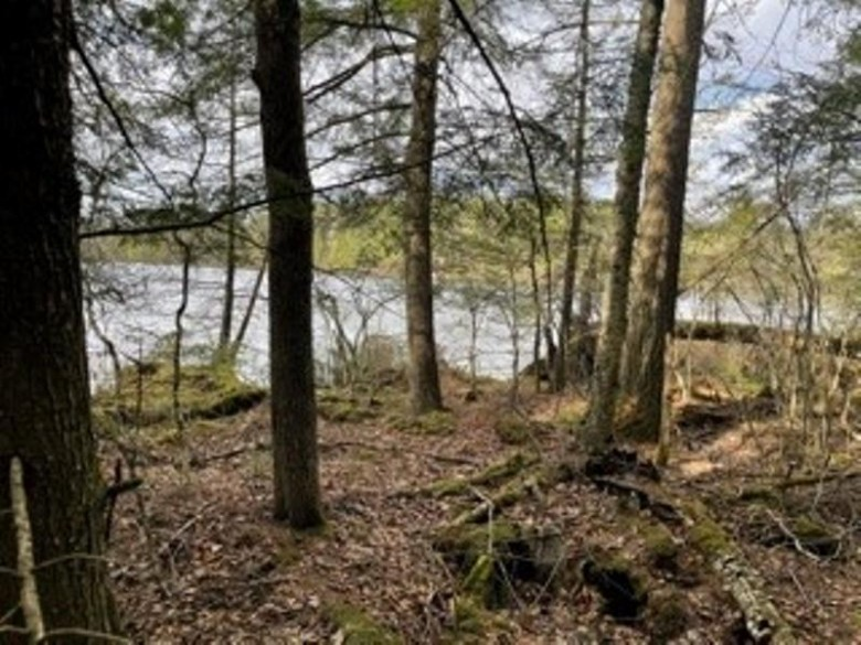 2 ACRES LOT 4 Lake 19 Road, Medford, WI by Coldwell Banker Action $79,900