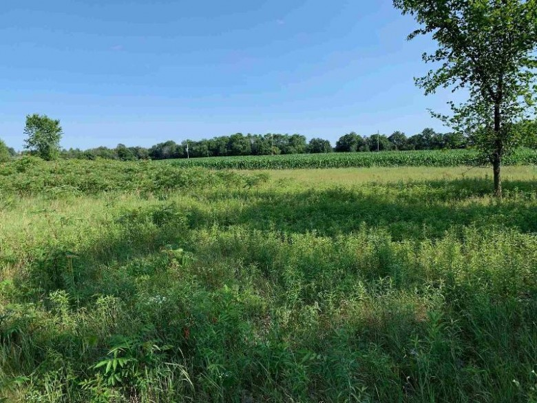 LOT 41 836th Avenue Colfax, WI 54730 by North Central Real Estate Brokerage, Llc $23,000