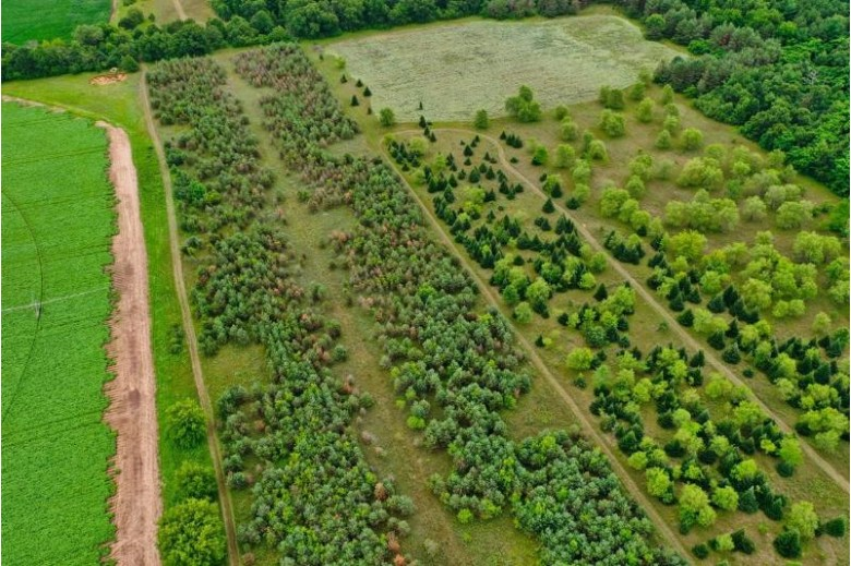74 ACRES Apache Road Plainfield, WI 54966 by Re/Max Central $364,900