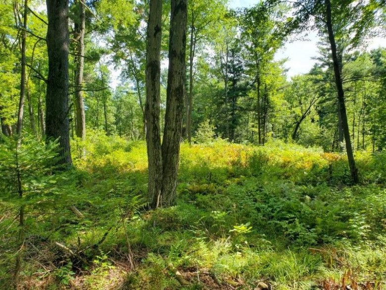 01 Taliesin Way Weston, WI 54476 by First Weber Real Estate $225,000