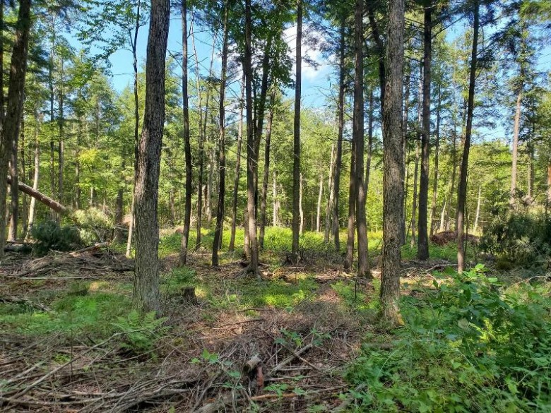 02 River Road Ringle, WI 54471 by First Weber Real Estate $94,900