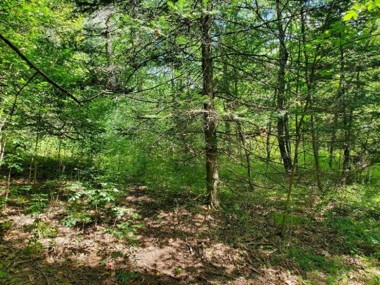 05 River Road Ringle, WI 54471 by First Weber Real Estate $199,900