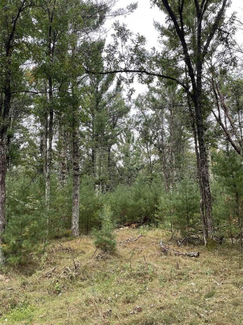 13.62 ACRES Townline Road LOT 3 OF WCCSM 10968, Wisconsin Rapids, WI by Re/Max Connect $136,000